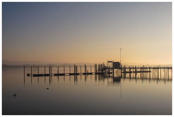 Schiffsanleger Iznang im Morgenlicht 3378