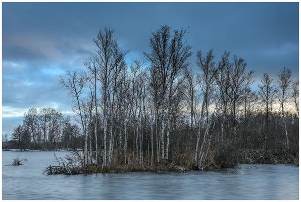 Uferlandschaft Nillsee 5275