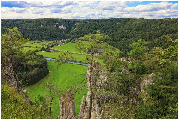 Blick auf Neidingen und die Donau 7993