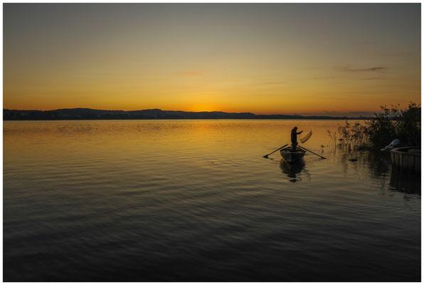 Fischer in der Morgendämmerung vor der Insel Reichenau 0722