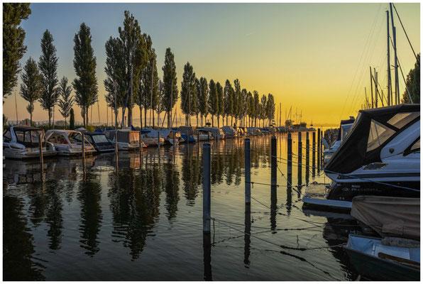 Jachthafen Moos mit Pappelallee 0586