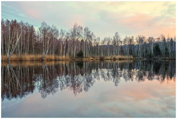 Moorsee im Pfrunger-Burgweiler Ried 1940