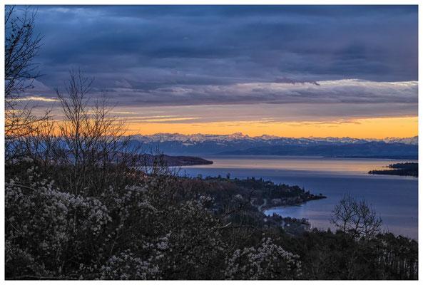 Blick vom Haldenhof über den Überlinger See und die Alpenkette 3869