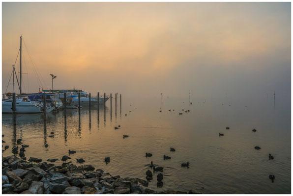 Morgendämmerung über dem Zeller See bei Moos 3477