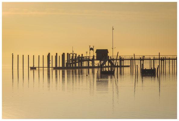 Schiffsanleger Iznang im Morgenlicht 3350