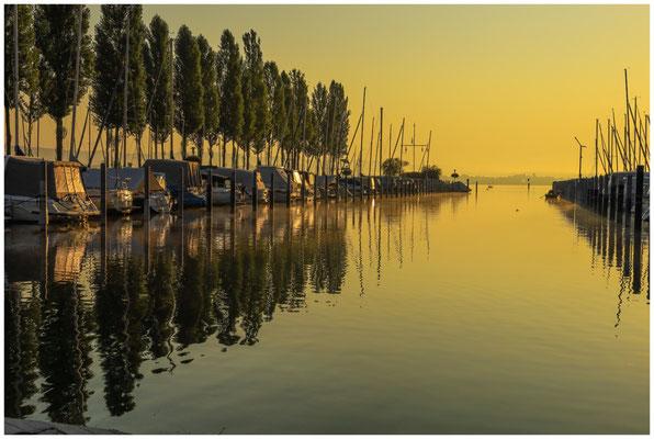 Boote im Jachthafen von Moos im Morgenlicht 0610
