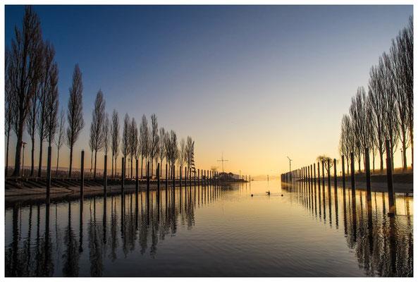 8469 Jachthafen Moos nach Sonnenaufgang