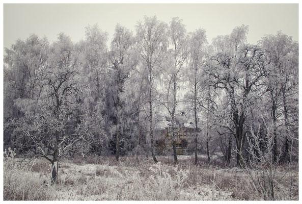 Winterlandschaft mit altem Bauernhaus bei Stockach 2478