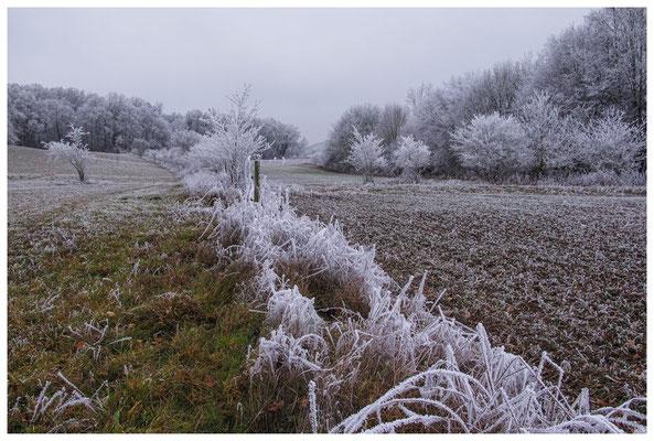 2198 Winterlandschaft