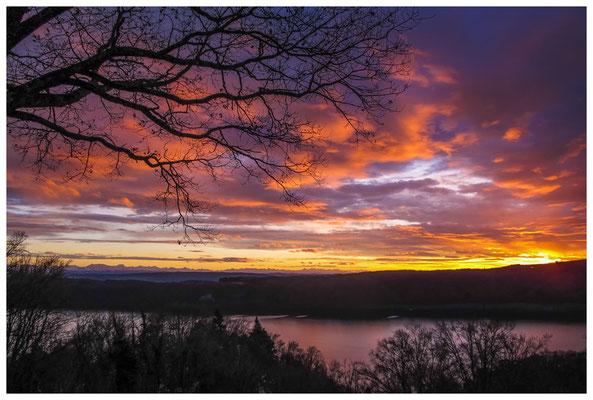 Blick vom Haldenhof auf den Überlinger See und die Alpen im Abendlicht 3899
