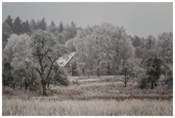 Winterlandschaft mit altem Bauernhaus bei Stockach 2523