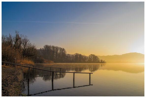 """Uferweg zwischen Bodman und Ludwigshafen NSG """"Bodenseeufer"""" 3150"""