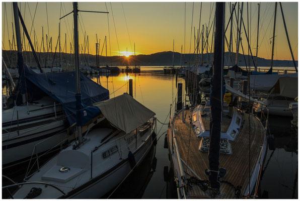 Boote im Jachthafen Bodman bei Sonnenaufgang  0147