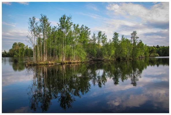 4642 Nillweiher - ein Paradies für Angler