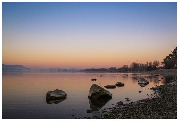 Morgendämmerung an der Radolfzeller Mole - mit Blick auf die Halbinsel Höri 2709