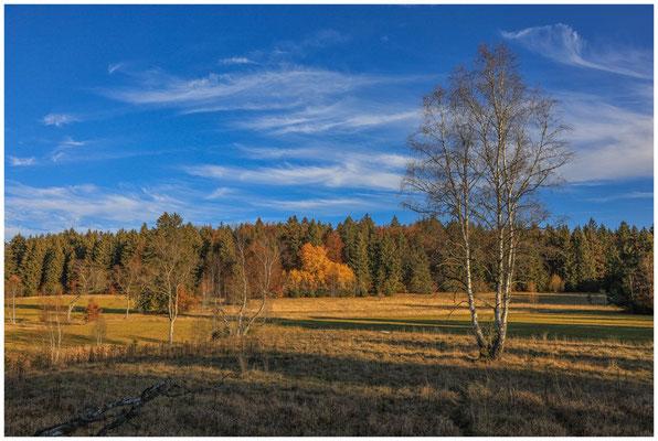 Landschaft im Irndorfer Hardt 4564