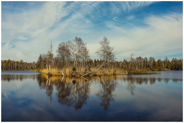 Der Vogelsee im Pfrunger-Burgweiler Ried 1822