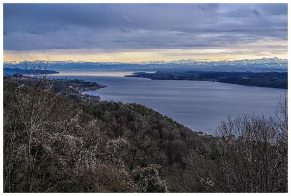 Blick vom Haldenhof über den Überlinger See und die Alpenkette 3847