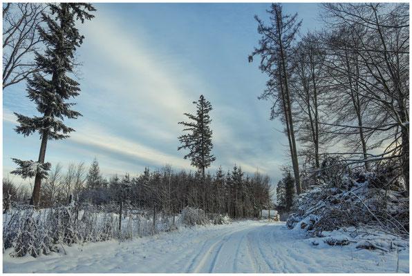Waldweg 5691