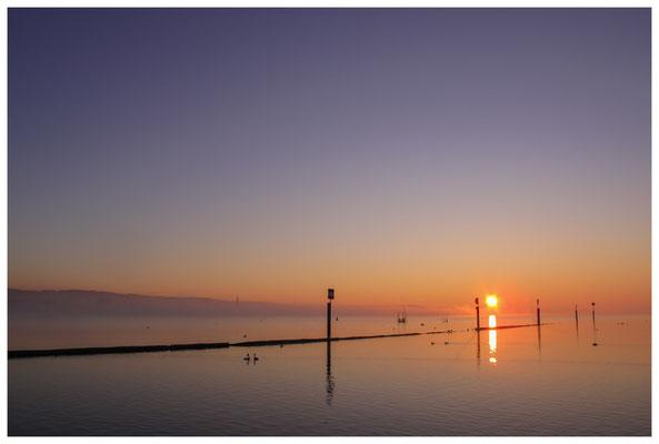 8416 Sonnenaufgang über dem Bodensee bei Moos