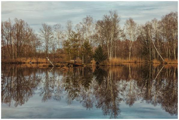 Moorsee im Pfrunger-Burgweiler Ried 1915