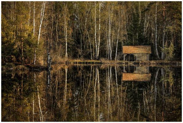 Uferlandschaft Moorsee mit Hütte 2194