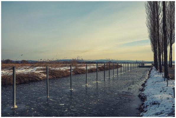 Kalter Wintermorgen in Moos 6099