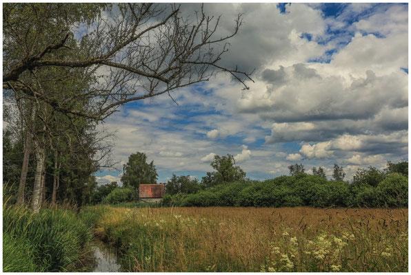 Scheune im Ried bei Bad Buchau 3266
