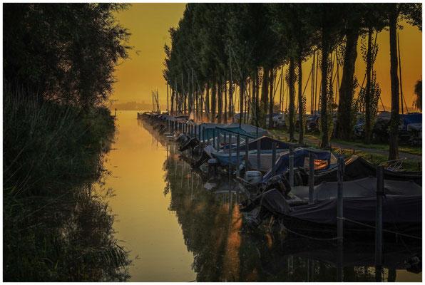 Seitenarm Jachthafen Moos im Morgenlicht 0577