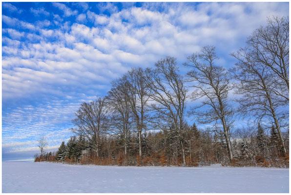 Schneelandschaft mit Hochstand bei Heudorf i. Hg. 5714