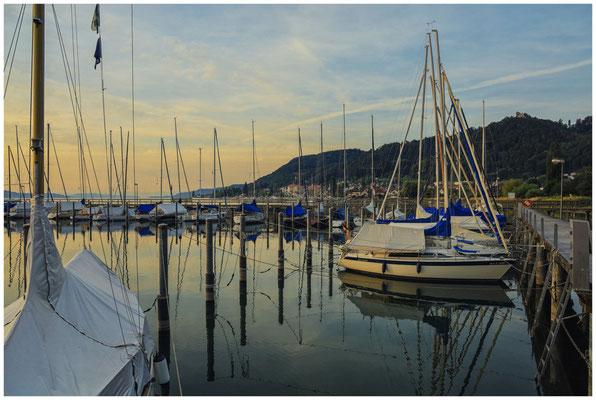 Morgenstimmung im Jachthafen Bodman 2903