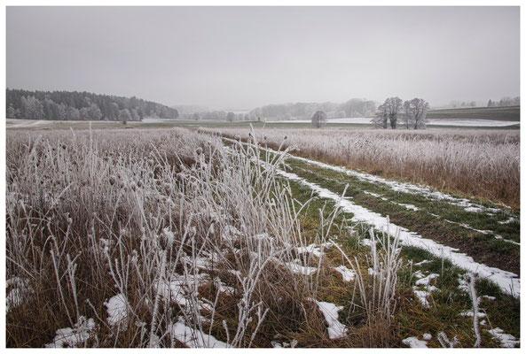 Winterlandschaft mit Raureif bei Stockach 2509