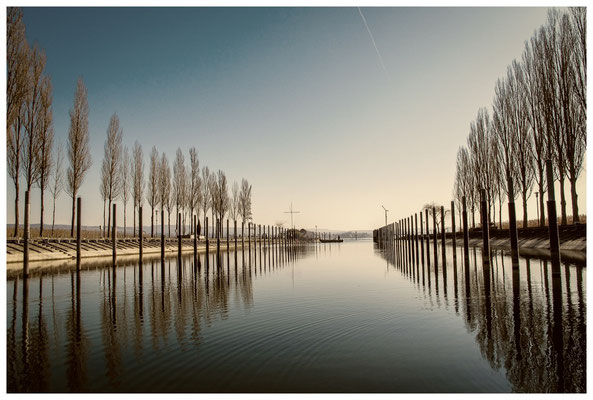 8582 Jachthafen Moos nach Sonnenaufgang