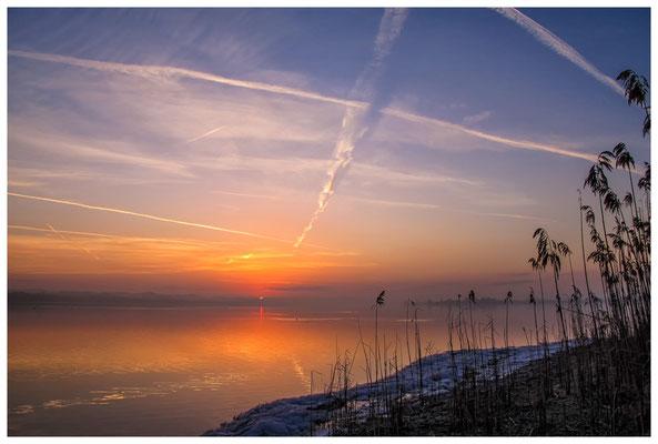 Sonnenaufgang an der Mettnauspitze mit Blick auf die Insel Reichenau und das Allensbacher Ufer 2832
