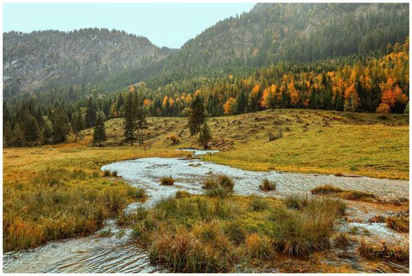 Landschaft im Tannheimer Tal 0985
