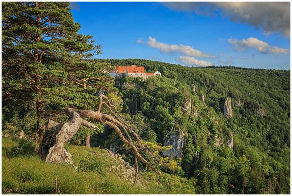 Burg Wildenstein vom Bandfelsen aus gesehen 7808