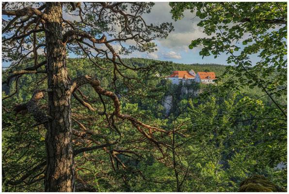 Burg Wildenstein 7779