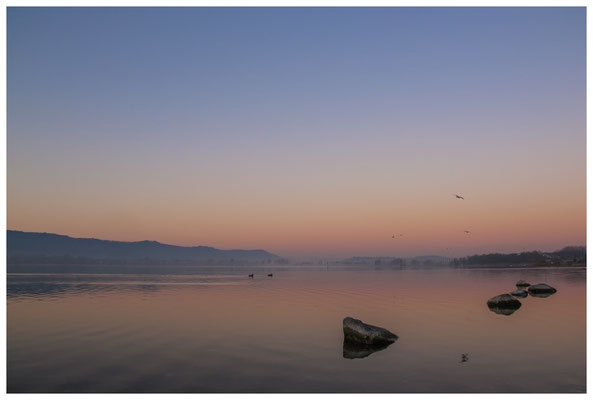 Morgendämmerung an der Radolfzeller Mole - mit Blick auf die Halbinsel Höri 2691