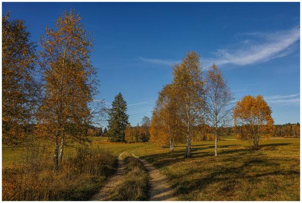 Landschaft im Irndorfer Hardt - Donautal 1452