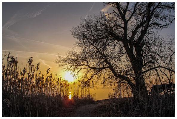 Sonnenaufgang an der Mettnauspitze 2911