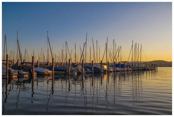 Yachthafen Insel Reichenau bei Sonnenaufgang 9510