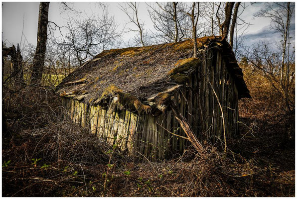 Holzhütte im Pfrunger-Burgweiler Ried 2172