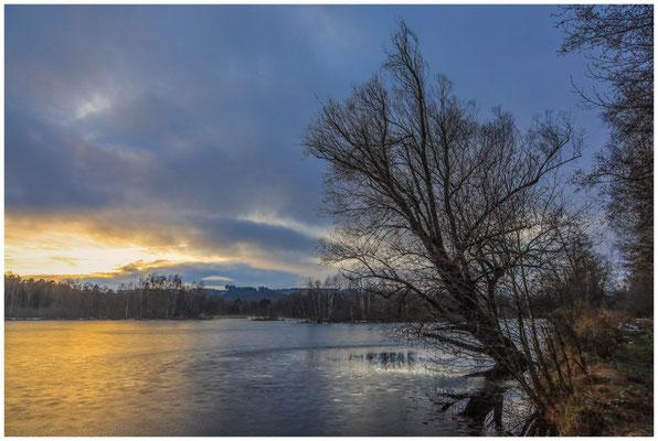 Uferlandschaft Nillsee 5288