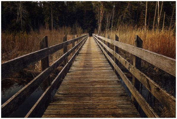 Holzbrücke im Pfrunger-Burgweiler Ried 1889