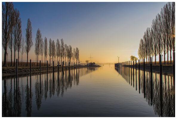 Jachthafen Moos im Morgenlicht 3388