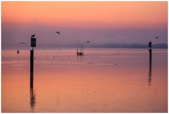 Morgendämmerung über dem Zeller See 0465