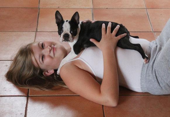Boston Terrier, Boston Terrier-Welpen/Würfe/Züchter in Neuerburg/Rheinland-Pfalz, eingetragene Zuchtstätte für Boston Terrier!