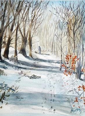 Walk in Winter Sunshine