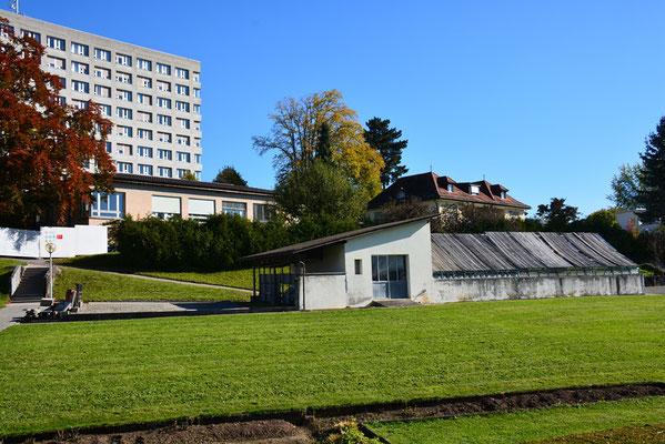 Ruckbau Haus 3 Und 8 Baugzos Webseite