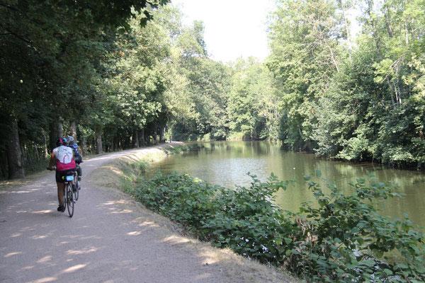 Sur la piste le long du canal latéral à la Moselle